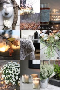 Best things of Autumn I Love Winter, Winter Wonder, Autumn Decorating, Fall Decor, Collages, Nordic Lights, Fall Pictures, Colour Board, Spring Garden