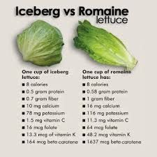 Calories In Romaine Lettuce Lettuce Benefits Lettuce Nutrition Food Health Benefits