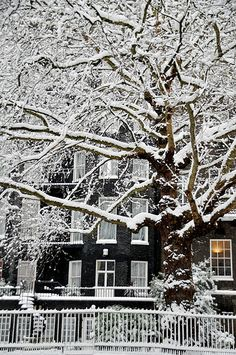 mistymorningme: London Snow 09 by Paolo Camera mistymorningme: London Snow 09 von Paolo Camera I Love Winter, Winter Colors, Winter Snow, Winter White, Winter Christmas, London Winter, London Snow, Snow Scenes, Winter Scenes