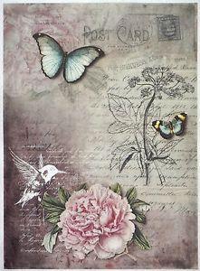 Papel-De-Arroz-Para-Decoupage-Decopatch-Scrapbook-Craft-Hoja-Vintage-Botanic-Garden