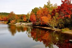 New Brunswick Canada, Bing Images, Scenery, River, Fall, Outdoor, Autumn, Outdoors, Landscape