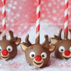 Check out these super cute Christmas cake pop ideas, so you can make these for this holiday season. Cake pops make fantastic neighbor gifts & teacher gifts. Christmas Cake Pops, Christmas Sweets, Noel Christmas, Christmas Goodies, Christmas Baking, Rudolph Christmas, Christmas Gifts, Holiday Cakes, Holiday Desserts