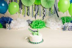Dinosaur Cake Smash-Blue & Green-Dallas Cake Smash Photographer
