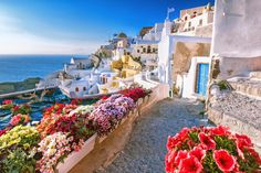 Looking for the best beaches in Santorini Greece to visit on your next trip? This comprehensive guide outlines all the best Santorini beaches. Santorini Greece, Mykonos, Kamari Santorini, Santorini Tours, Santorini Beaches, Tropical Beaches, Santorini Holidays, Share Pictures, Tourism Day