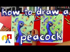 How To Draw A Peacock (realistic) - YouTube