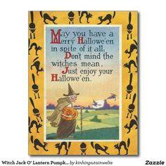 Witch Jack O' Lantern Pumpkin Black Cat Postcard