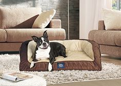 Serta Orthopedic Quilted Couch, Large, Mocha   Check it out-->  http://cutemypets.us/product/serta-orthopedic-quilted-couch-large-mocha/  #pet #food #bed #supplies