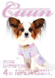Cuun -Luxury Dog Apparel Magazine- 2013