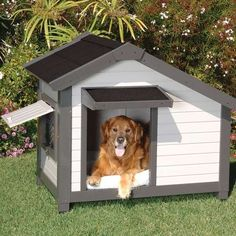 The 'Cozy Cottage Dog House' Lets Your Dog Live the American Dream trendhunter.com