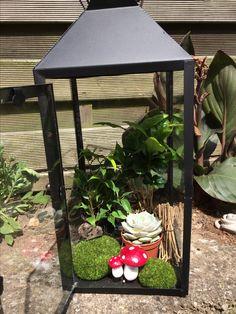 En lanterne er faktisk ret god som en lille dekoration med grønt og forskellige figurer.