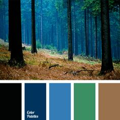 Color Palette: 800