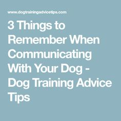 3 Things to Remember When Communicating With Your Dog - Dog Training Advice Tips