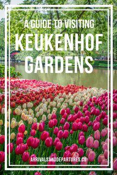 Visiting the Incredible Keukenhof Flower Gardens