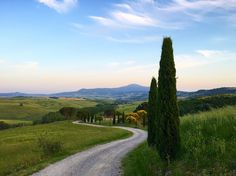 I love the scenic cypress lined roads in val dorcia!  #italy #toskana #tuscany #sanquerico #nature #nature_perfection #nature_of_our_world #naturephotography #naturelovers #natureza #beautiful #exploremore #explore #vacations #goodtimes #instagram #instalove #instadaily #instalike #valdorcia #cretesenesi #nofilter @landscape.lovers by kathyprigge