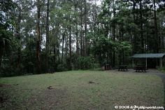 Boombana is a lovely secluded picnic spot between the town of Mt Nebo and Jolly's Lookout. It offers barbeques, toilets and picnic tables. It also has two very different walking tracks. Picnic Spot, Us Travel, Brisbane, Picnic Tables, Australia, Toilets, World, Gallery, Places