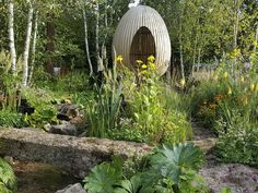 The Gold Medal gardens at Chelsea Flower Show 2021 have been announced Outdoor Areas, Outdoor Rooms, Welcome To Yorkshire, Hardy Geranium, Gold Medal Winners, Garden Show, Chelsea Flower Show, Delphinium, Pink Peonies