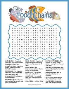 No Prep Ecosystems Worksheet Food Chains Word Search Fun Food