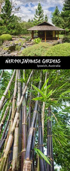 A visitors guide to the Nerima Japanese Gardens in Ipswich, Australia via @2aussietravellers