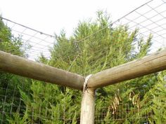 The cat enclosure is very simple to put together with fencing wire and overlapping poles placed at the top of the fence. A single wire is strung and the wire attached and then tensioned. Cat Enclosures - Outdoor Cat Runs - Many Cat Enclosure Pictures Más Diy Cat Enclosure, Outdoor Cat Enclosure, Outdoor Cat Run, Cat Habitat, Cat Fence, Cat Cages, Cat Garden, Garden Deco, Photo Chat