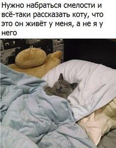 Новости Объявления Чайковский | Коммерсант