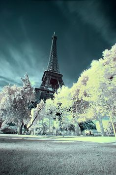 Eiffel Tower on a frosty winter day. I'd like to spend the holidays in Europe. You?