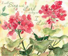 Lang Desktop/Wallpapers February 2016 | Nature's Grace