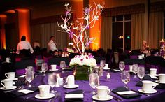 branche arbre orchidee decoration table