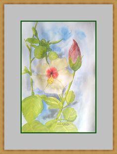 Kwiat Chińskiej Róży /hibiskus/