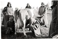 Bucket List: Milk a cow (I bet I could get this one checked really soon!)
