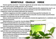 Beneficiile ceaiului verde Did You Know, Cancer, Health Fitness, Motto, Plants, Food, Medicine, Green, Essen