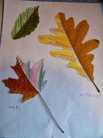 Many creative leaf art ideas