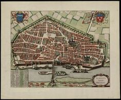 1682-Aurelia_vernaculo_Orliens.JPG 363×300 pixels