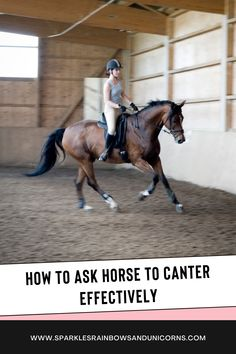 Most of us know the universal canter aid inside leg at the girth and outside leg slides back to ask for the canter. But sometimes it is a struggle getting the horse into the canter. So follow these steps in the post and you will have a crisper more effective canter transition and it is simple. Cheers! #canter #horsecanter #canteringtips #ridingtips Horse Behavior, Horse Training Tips, Lunges, Cheers, The Outsiders, Racing, Horses, Simple, Running