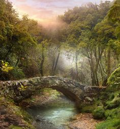 Love Mother Earth and all of Nature. Wife, mother, grandmother teaching assistant Druid/Hedgewitch Druid rep on local Milti Faith Partnership Healer - I. Thomas Kinkade Art, Beautiful Places, Beautiful Pictures, Deviantart, Pictures To Paint, Faeries, Landscape Paintings, Nature Photography, Scenery