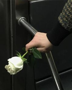 Hands Holding Flowers, We Heart It, Princess Photo, Nyc Subway, Hold My Hand, Ulzzang, Photos, Canning, Instagram Posts