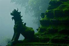 Jungle ruins - Wat Palad, Chiang Mai, Thailand by John Spies, 500px
