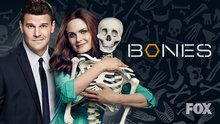 Bones - Episodes