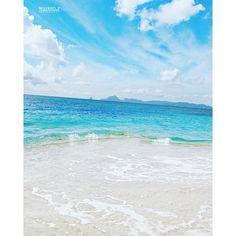 Salines beach. Martinique
