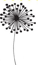 simple doodle of a dandelion Silhouette Cameo, Silhouette Projects, Doodle Patterns, Flower Doodles, Sgraffito, Digital Stamps, Doodle Art, Diy Art, Zentangle