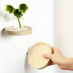 DOMESTIC  Round platform Inga Sempé - 3 pack  Three little wood platforms that you can use to exhibit your favorite items! A little flower, a nice objet, a souvenir? Fix it on a wall and free your wildest imagination!