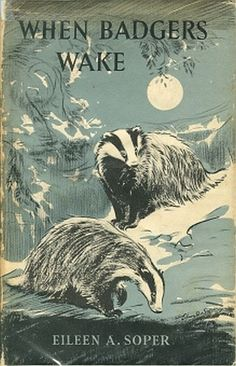 When Badgers Wake, Eileen A. Badger Illustration, Cute Illustration, Nostalgia Art, Honey Badger, British Wildlife, Beautiful Book Covers, Vintage Books, Vintage Art, Woodland Creatures