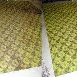Jak vyčistit a zbavit zápachu zatuchlý koberec?
