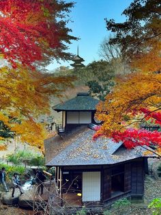 Autumn in Sankeien Park, Yokohama, Japan
