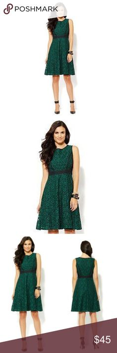 "NY & COMPANY Green & Black Lace Fit & Flare Dress NWT NY & COMPANY Green & Black lace fit and flare dress will be a stunning addition to your wardrobe!   *Chest 38"" *fully lined, machine wash *Poly/spandex trim, cotton/nylon body *Poly lining *Bundle Discounts * No Trades * Smoke free New York & Company Dresses"