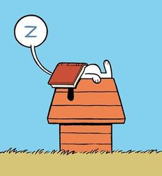 Snoopy falling asleep while reading a good book :) This is me every night ;