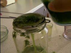 Το ρόφημα μαϊντανού είναι ένα εξαιρετικό φυσικό φάρμακο γεμάτο θρεπτικά συστατικά και ισχυρά αντιοξειδωτικά που συμβάλλει αποτελεσματικά ... Pickles, Cucumber, Mason Jars, Blog, Pickle, Canning Jars, Pickling, Cauliflower, Zucchini