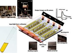 Biomedical Laboratory Science: Rapid Detection of Urinary Biomarkers with Novel Optical Device