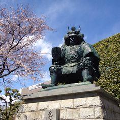 Famous samurai general in Japan. Takeda Shingen, Japanese Mythology, Japanese Warrior, Zbrush, Warriors, Samurai, Medieval, Past, Passion