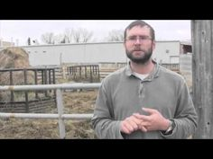 Beef Research School - Properly Diagnosing Causes of Lameness In Cattle - YouTube