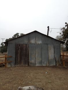 Galvanized corrugated water pumping shed - was a barn now ? San Juan Capistrano